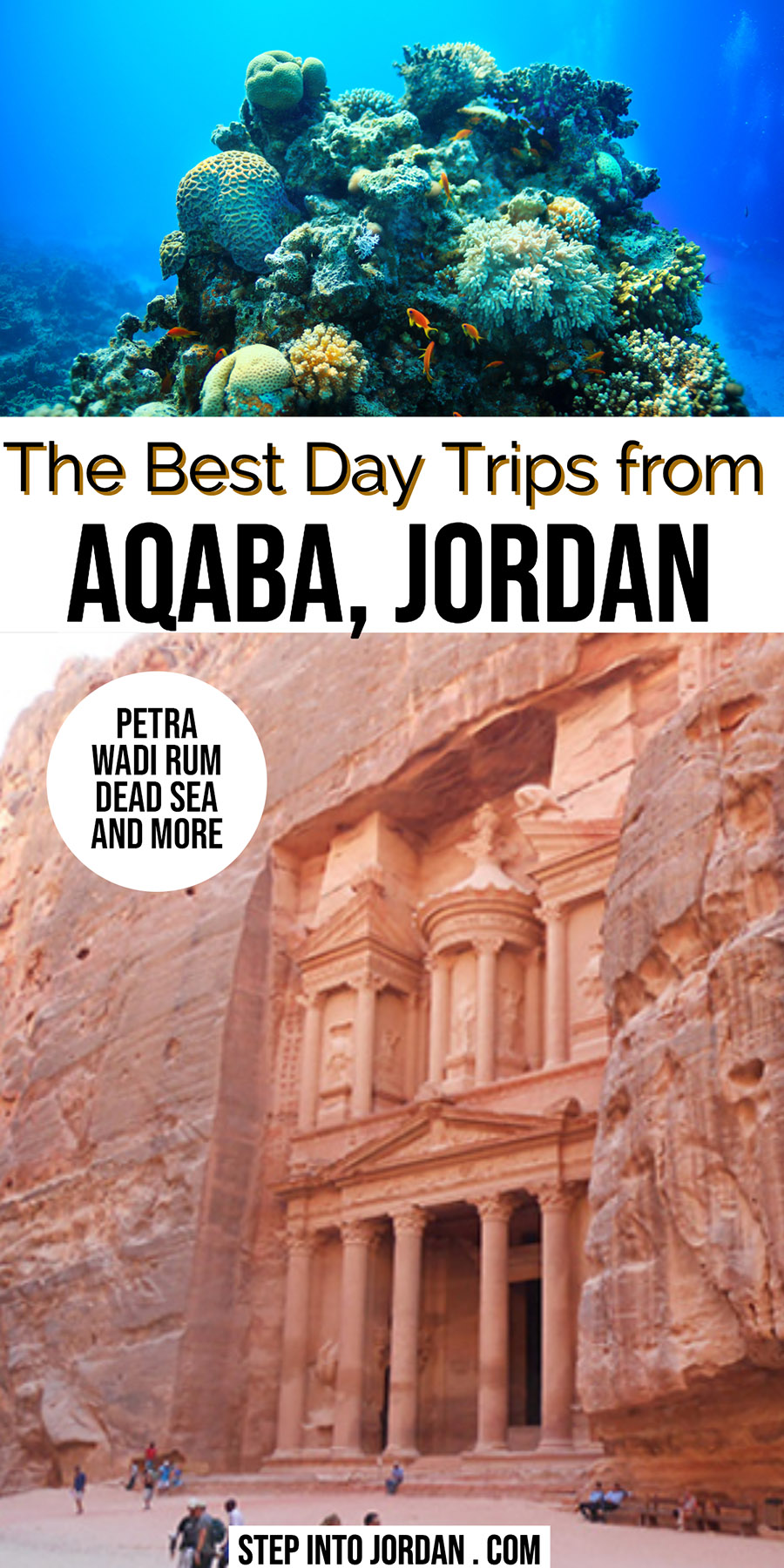 Day Trips from Aqaba including Petra, Wadi Rum, Dead Sea