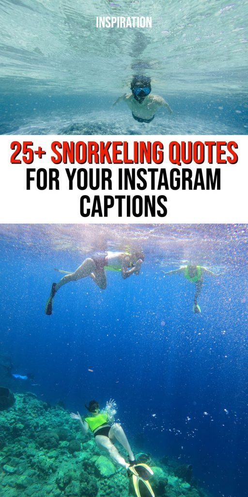 Perfect captions for snorkeling.