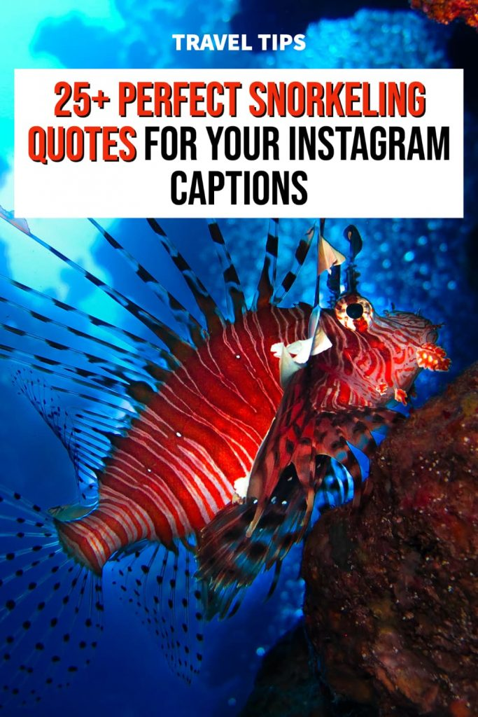 Snorkeling Quotes for Instagram